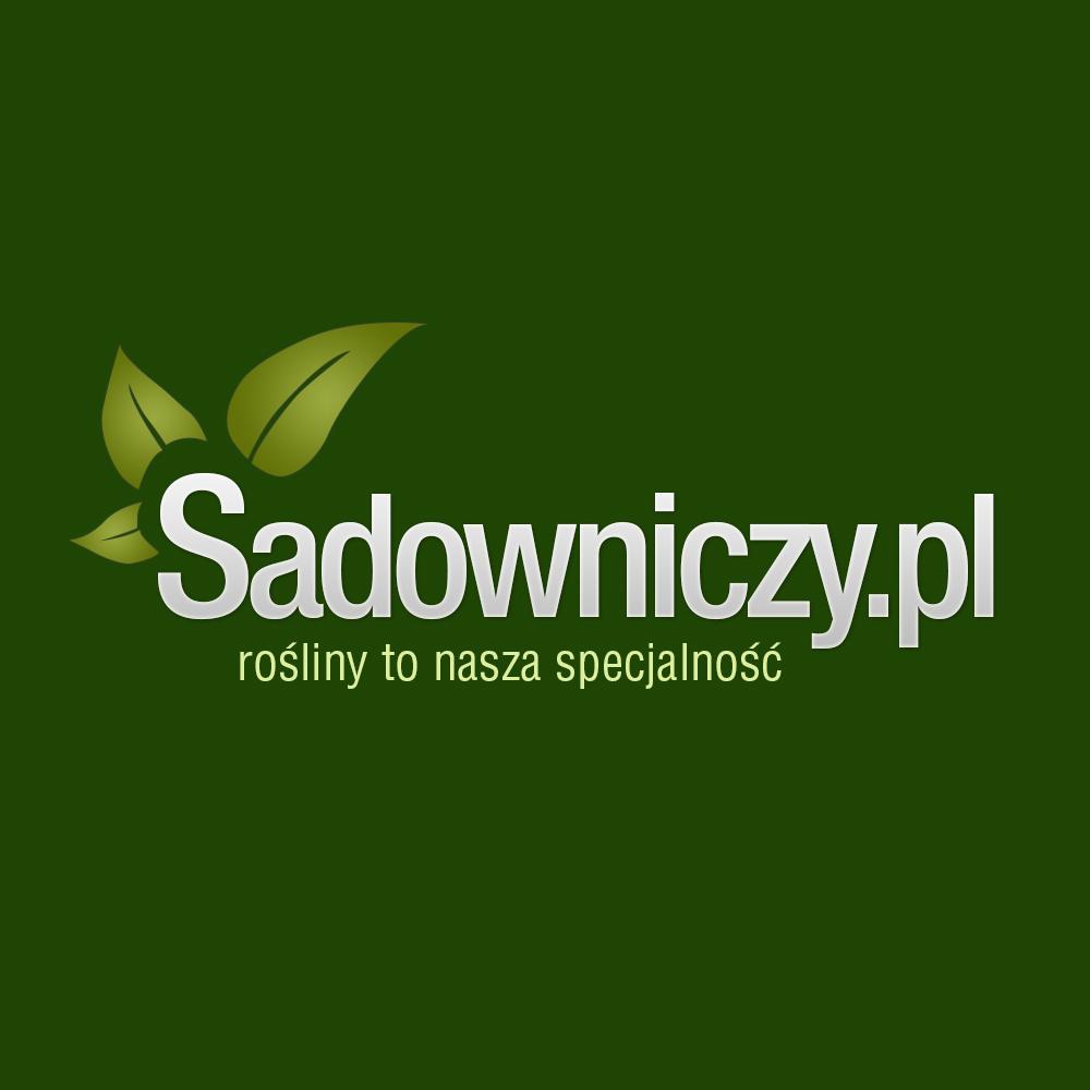 Logo Sadowniczy.pl