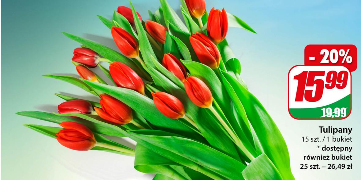 Dino: -20% na tulipany 05.03.2021