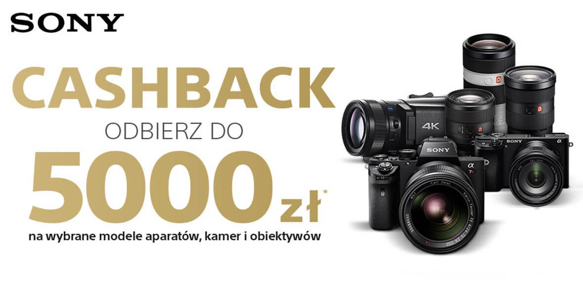 Do 5000 zł