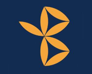 Logo Bukovina