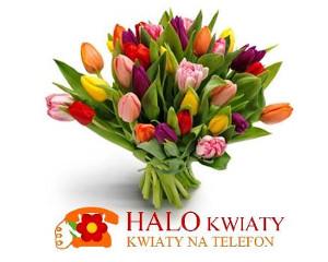 Logo Kwiaciarnia Halokwiaty