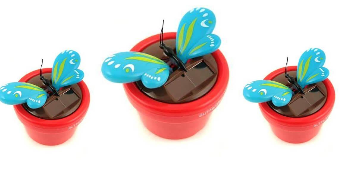 za solarnego motylka