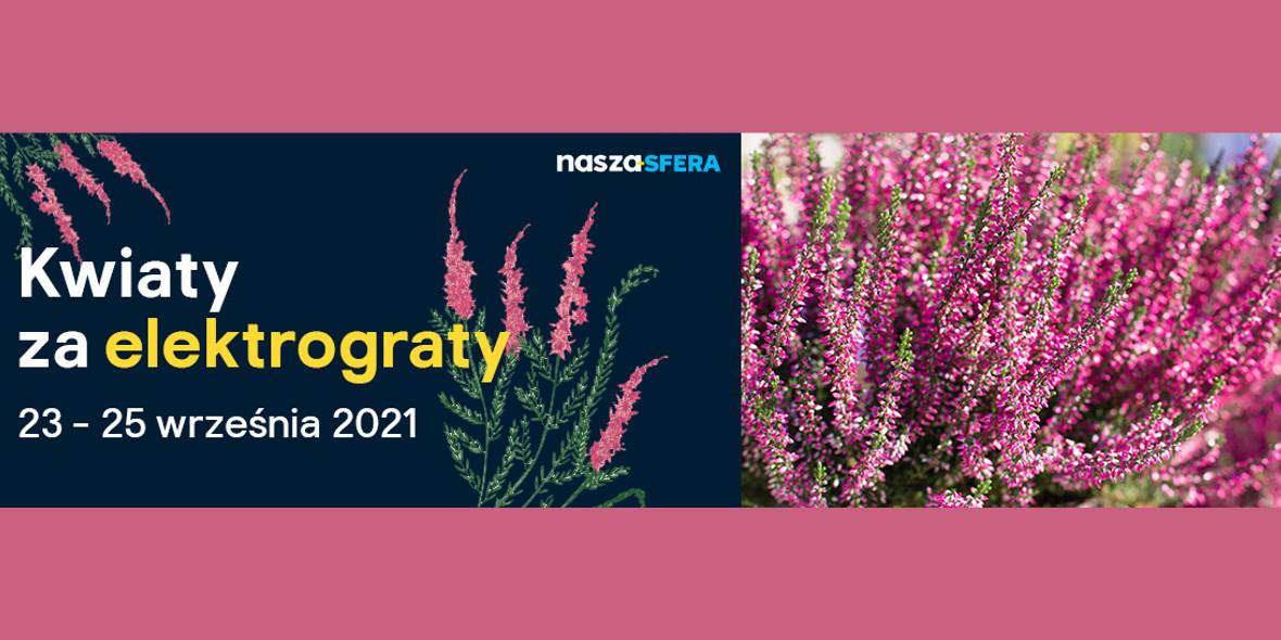 Castorama:  Kwiaty za elektrograty 23.09.2021