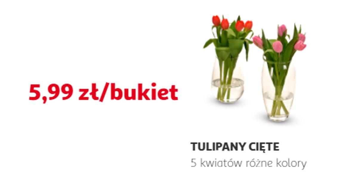 Auchan:  5,99 zł za bukiet tulipanów 06.03.2021