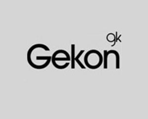 Logo Gekon