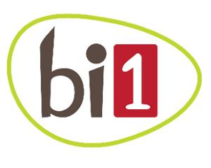Logo bi1