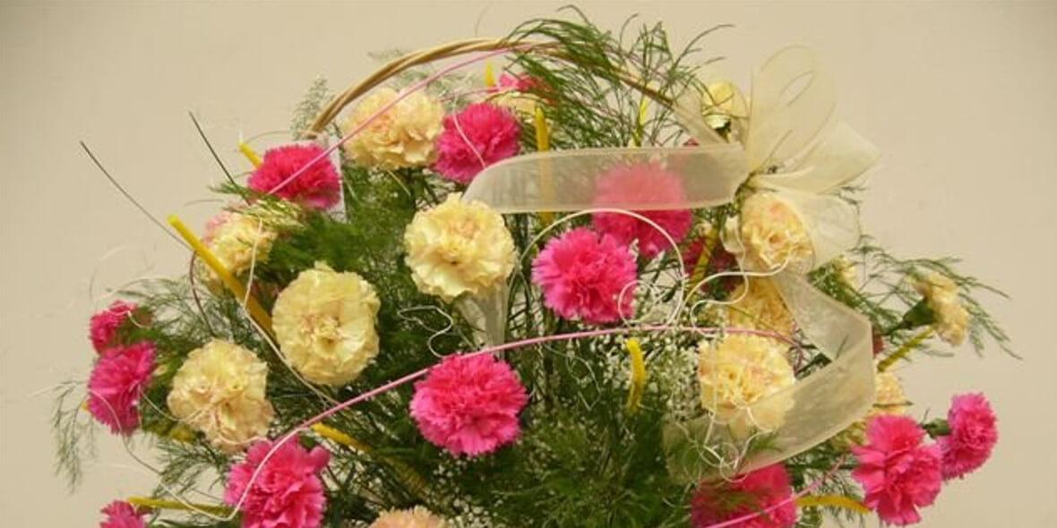 Kwiaciarnia Róża : -10% na kwiaty cięte i doniczkowe