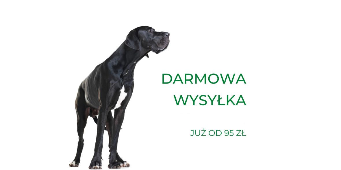 Fera:  Darmowa dostawa przy zamówieniach od 95 zł 01.01.0001