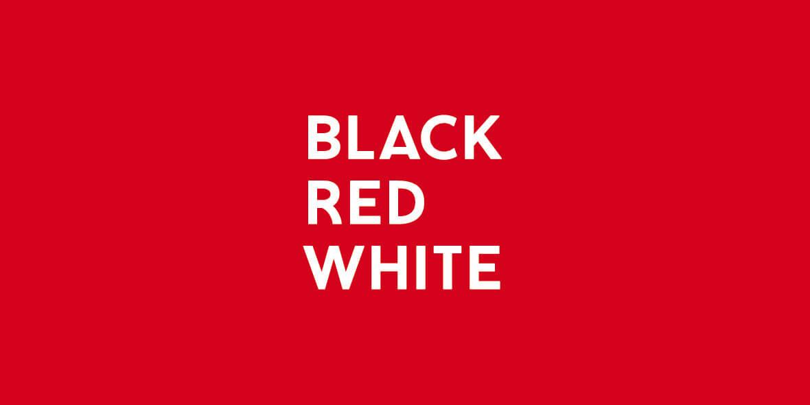 Black Red White: Katalog rodzinnych wnętrz 2021-01-01