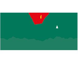 CH Tulipan